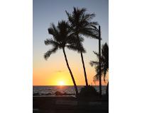【羽田発】ハワイアン航空往復直行便利用ハワイ島5・6日 往復送迎付き【先どり!】