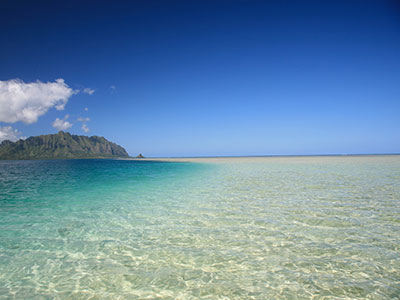 【羽田発】日本航空往復直行便利用ホノルル5・6日 往復送迎付き【盛りだくさんハワイ】