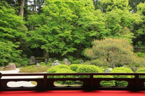 <6・7月限定>日帰り京都 ~苔&青もみじの名所と御朱印めぐりセットプラン~