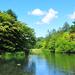 夏の軽井沢で涼を感じる!おすすめ観光スポット12選