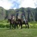 家族・カップル・友達同士でも!みんなで楽しめるハワイで人気のテーマパーク