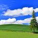 夏の旅行はここに決まり!夏の国内旅行都道府県別人気ランキングTOP15