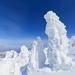 12月の国内旅行で行くべきおすすめはココ!絶景やイルミネーションスポット