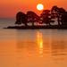 見渡す限りのオレンジ色に癒される♡国内にあるオレンジの絶景スポット10選