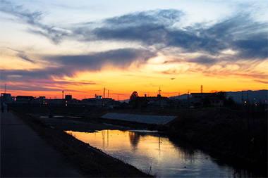 撮影地:奈良県大和郡山市 佐保川沿い