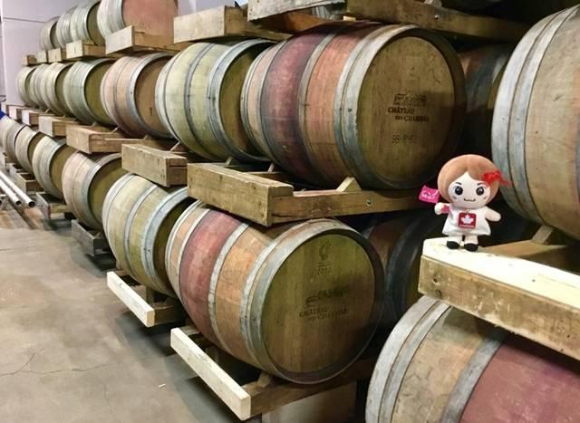 オーク樽が並ぶワインカーヴ