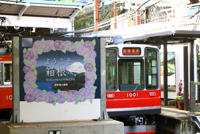 photo by author (51028)