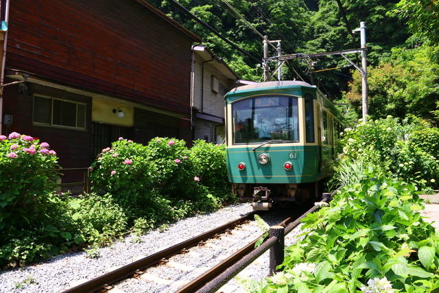 photo by author (51077)