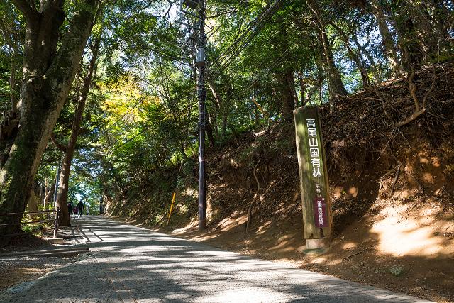 b3c6fb1f6b 関東から日帰りドライブを楽しむならここでしょ!おすすめの観光スポット ...