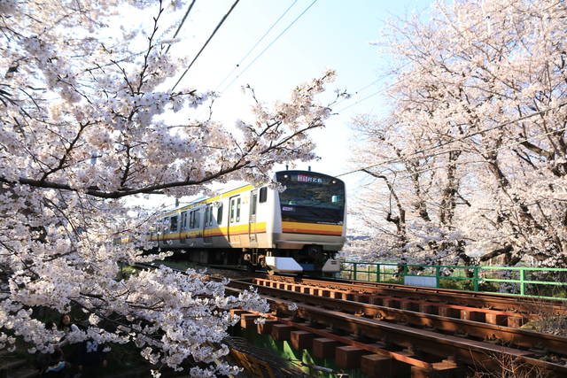 photo by author (72853)