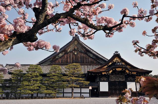 写真提供:京都市元離宮二条城事務所 (75650)