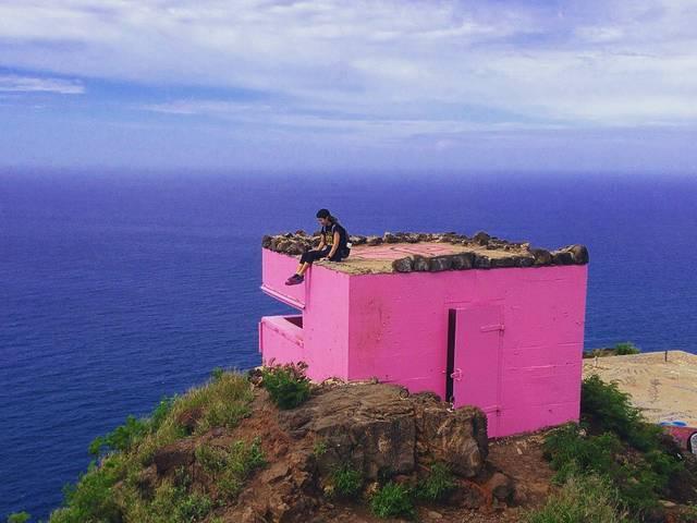 ピンクのピルボックス
