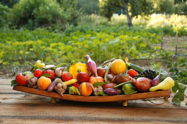 豊富な農産物の数々