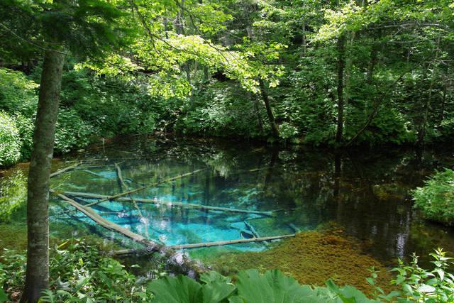 摩周湖神の子池