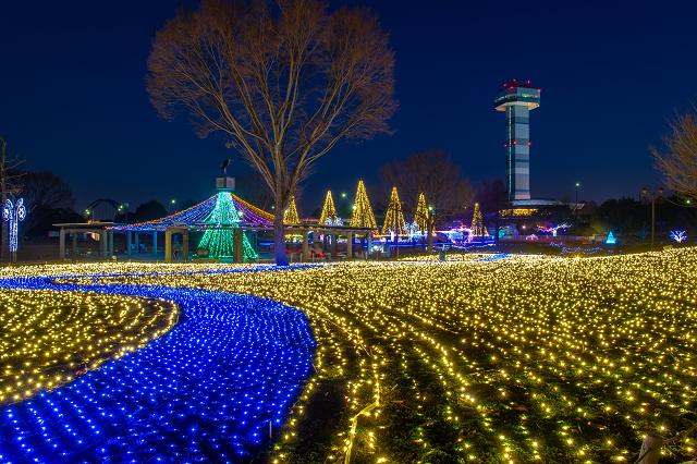 国営木曽三川公園138タワーパークイルミネーション