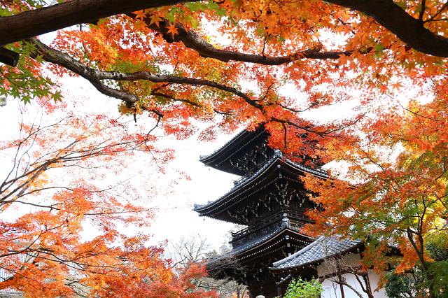 photo by tabibitokaoru (101017)