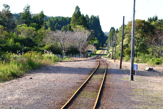 photo by author (101980)