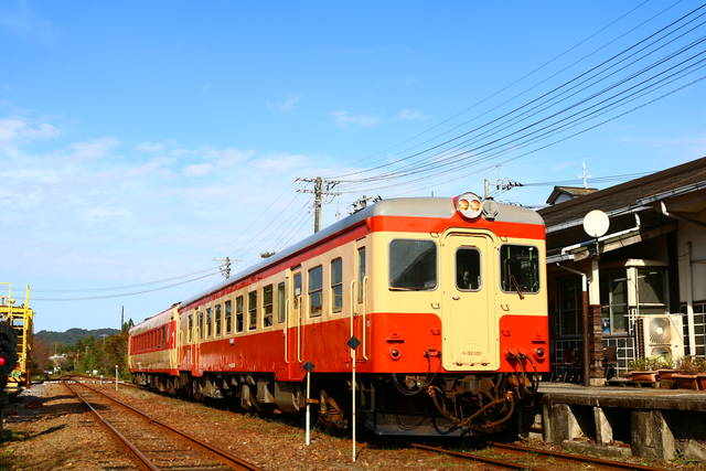photo by author (101984)