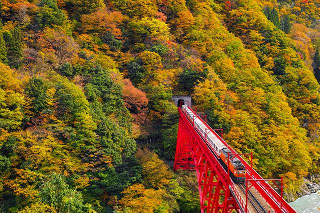 富山 県 観光