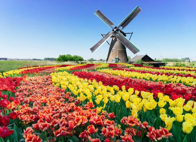4月に行きたい!春がベストシーズンのおすすめ海外旅行先10選 - Tripa ...