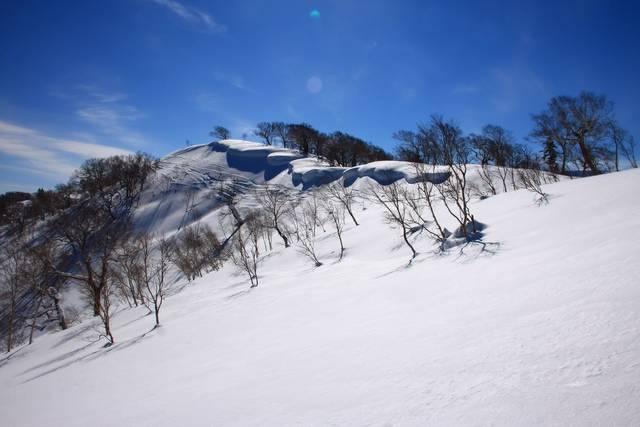 寒さを吹き飛ばす楽しさ満載!冬の人気アクティビティ10選 - Tripa ...