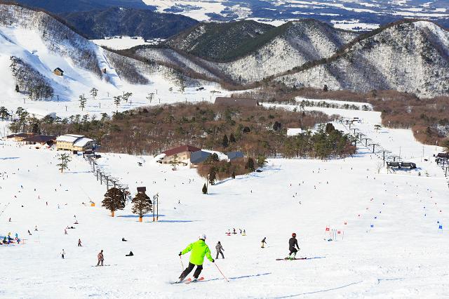 大山国際スキー場 (106703)