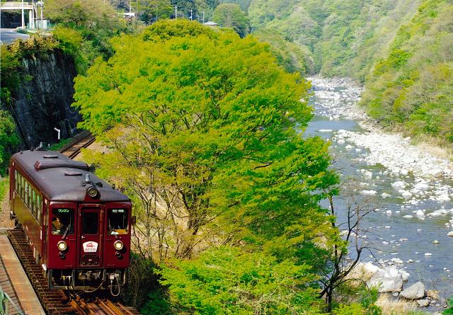 画像提供:わたらせ渓谷鐵道