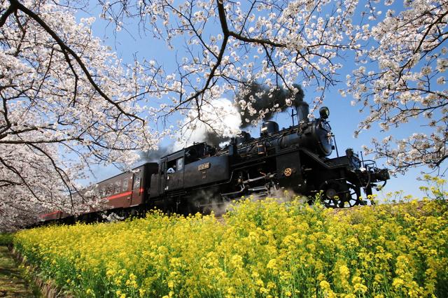 画像提供:真岡鐵道