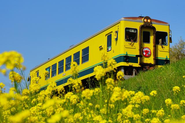 画像提供:いすみ鉄道