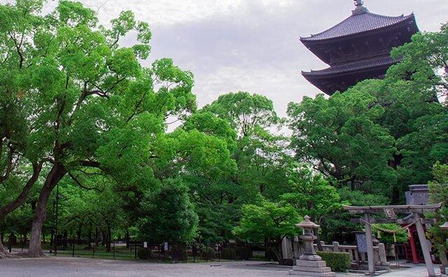 photo by 京都プラザホテル本館・新館 (145529)