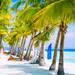ビーチリゾート旅行の人気ランキングとおすすめツアー