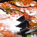 京都で紅葉を見るならここ!絶対行くべき京都の紅葉絶景スポット