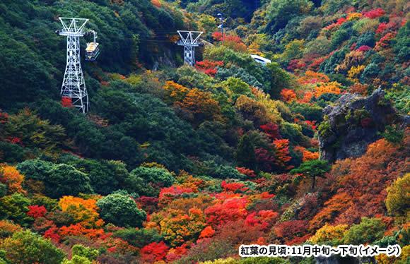 秋色に染まる寒霞渓 オリーブの楽園 小豆島を大満喫! 2日間