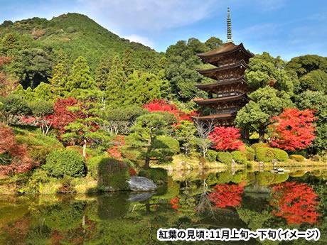 「宮島・紅葉谷公園」を海から陸から愛でる 広島・山口の紅葉名所めぐり 2日間