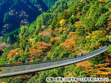 小型バスでしか行けない九州最深部の秘境 五家荘と高千穂峡 紅葉絵巻 3日間