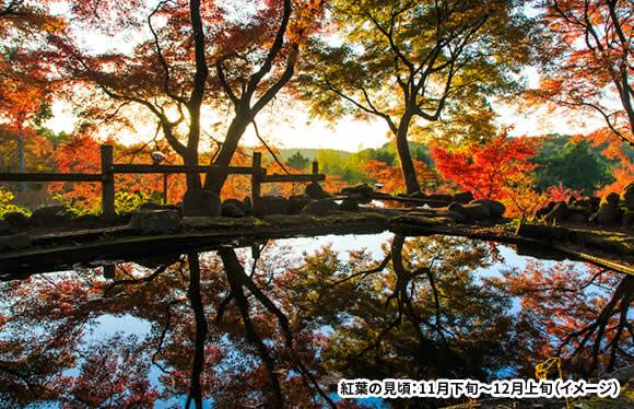 名湯 嬉野温泉・雲仙温泉に泊まる 国の名勝 九年庵の期間限定一般公開と秋の有田陶磁器まつり 3日間
