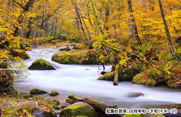 紅葉の北東北 奥入瀬渓流ゆっくり散策と色鮮やかな八幡平山頂をガイドと散策 3日間