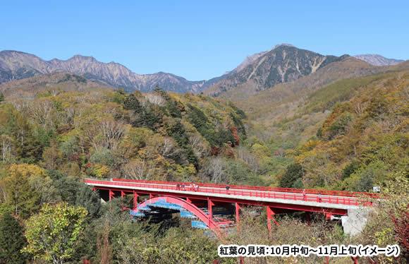 専門ガイドとゆったりめぐる 錦秋に染まる八ヶ岳高原ハイキング 3日間