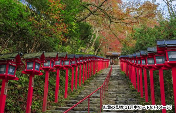 京都の紅葉を堪能 高雄・大原・鞍馬と秋の特別公開寺院 2日間