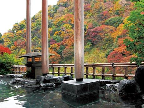 名湯宇奈月温泉に泊まる 紅葉彩る黒部峡谷トロッコ電車と専門ガイドとめぐる欅平ウオーキング 2日間