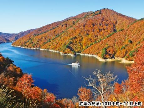 越後5つの紅葉・絶景大周遊 天空の「ドラゴンドラ」と奥只見湖遊覧船 3日間