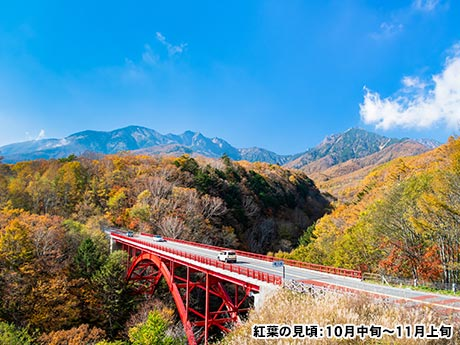 秋彩に染まる 信州 安曇野 八ヶ岳大周遊 3日間