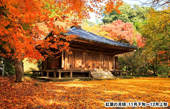 国東・別府と「麻生大浦荘」 2日間