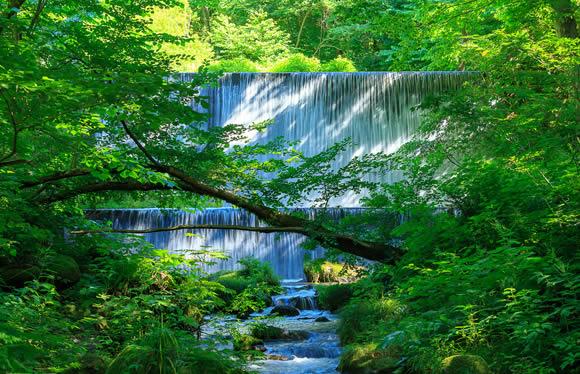 奥大山新緑ウォーキングと世界屈指のラジウム温泉の湯で癒される旅 2日間