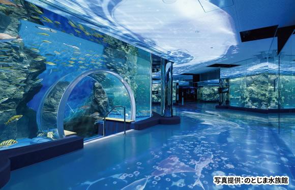 北陸で過ごす、夏の思い出づくり!人気ののとじま水族館と藤子不二雄の世界へ 2日間