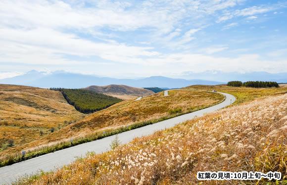 日本屈指の絶景街道「ビーナスライン」 標高2,000メートル 美ヶ原高原美術館と信州大自然満喫の旅 3日間