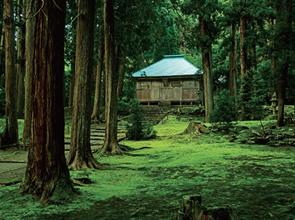 苔が美しい白山平泉寺と「曹洞宗大本山」永平寺 日帰り