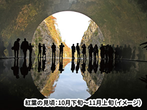 秋の清津峡・八海山ロープウェーの絶景と醸造の町「摂田屋」散策 3日間