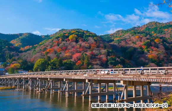 <おとなびメルマガ掲載コース>Web限定 JRで行く 今だけ得だ値 秋の京都フリープラン