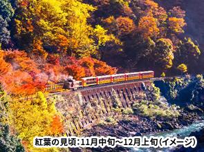 <おとなびメルマガ掲載コース>もみじ織りなす紅葉のトンネル 嵯峨野トロッコ列車と保津川下り 日帰り
